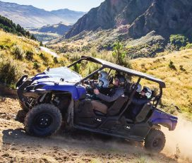 Off Road ExpeditionsScenic Guided Buggy Ride
